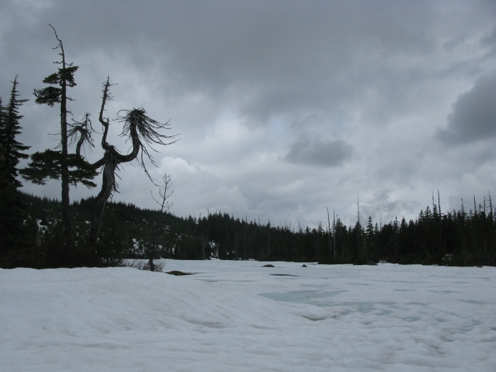 Summer comes late to Bachelor Lake, pictured here in June.