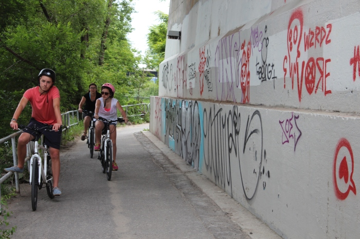 The Lower Don Trail, where graffiti is prolific as wildflowers.