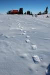 cabin footprints