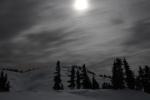 tet moonlight